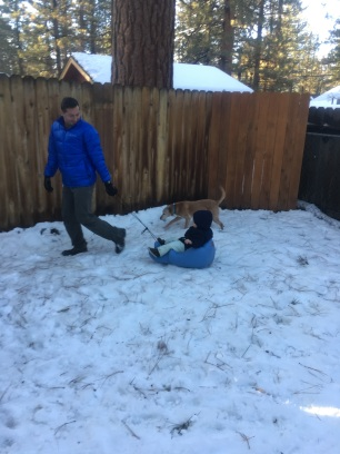 Sledding in the yard.